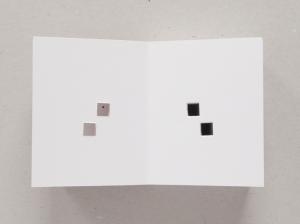 antenne.books.J. Meejin Yoon, Absence_2