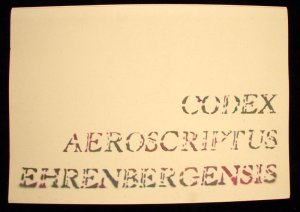 Uncatologed Codex Aeroscriptus Ehrenbergensis by Felipe Ehrenberg By means of manipulating stencils that were hand-cut for over a period 20 years, Mexican artist Felipe Ehrenberg creates a codex of the glyphs of contemporary life and culture. The result is a highly visual pre-Columbian, hard-boiled detective story. shot with digital Canon EOS 30D @600dpi date 8-21-07